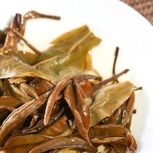 Free Shipping Cai Cheng New Tea 2015 Moonlight White tea 100 grams raw cake Yunnan Pu