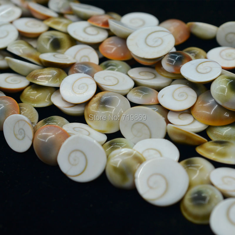Natural, color beautiful, Marine, conch fossils DIY Jewelry Making 40cm sale - joo kin's store