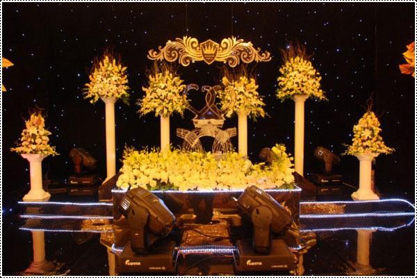 Free shipping,6mx12m led star curtain,DMX wedding equipments,tv show backdrops(China (Mainland))