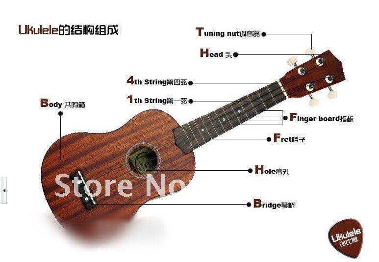 Ukulele : ukulele chords order Ukulele Chords Order at Ukulele Chordsu201a Ukulele