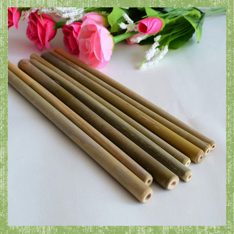 Free shipping Disposable travel holiday party wooden bamboo straw 10pieces(China (Mainland))